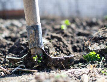 Verzakkende tuin: wie betaalt het herstel?